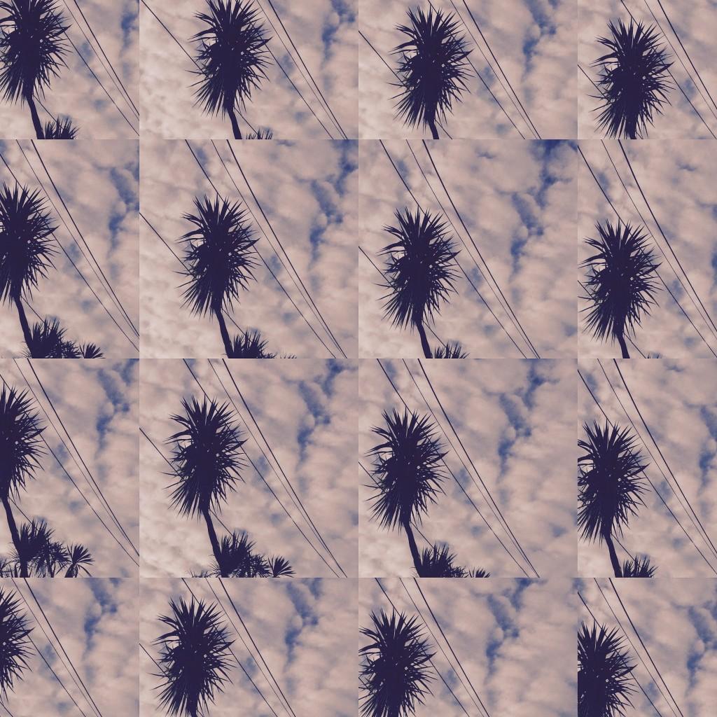 IMG_0330 tiled lofi