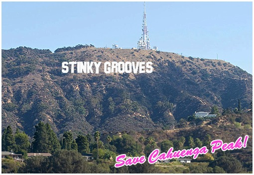 Stinky Grooves 74247