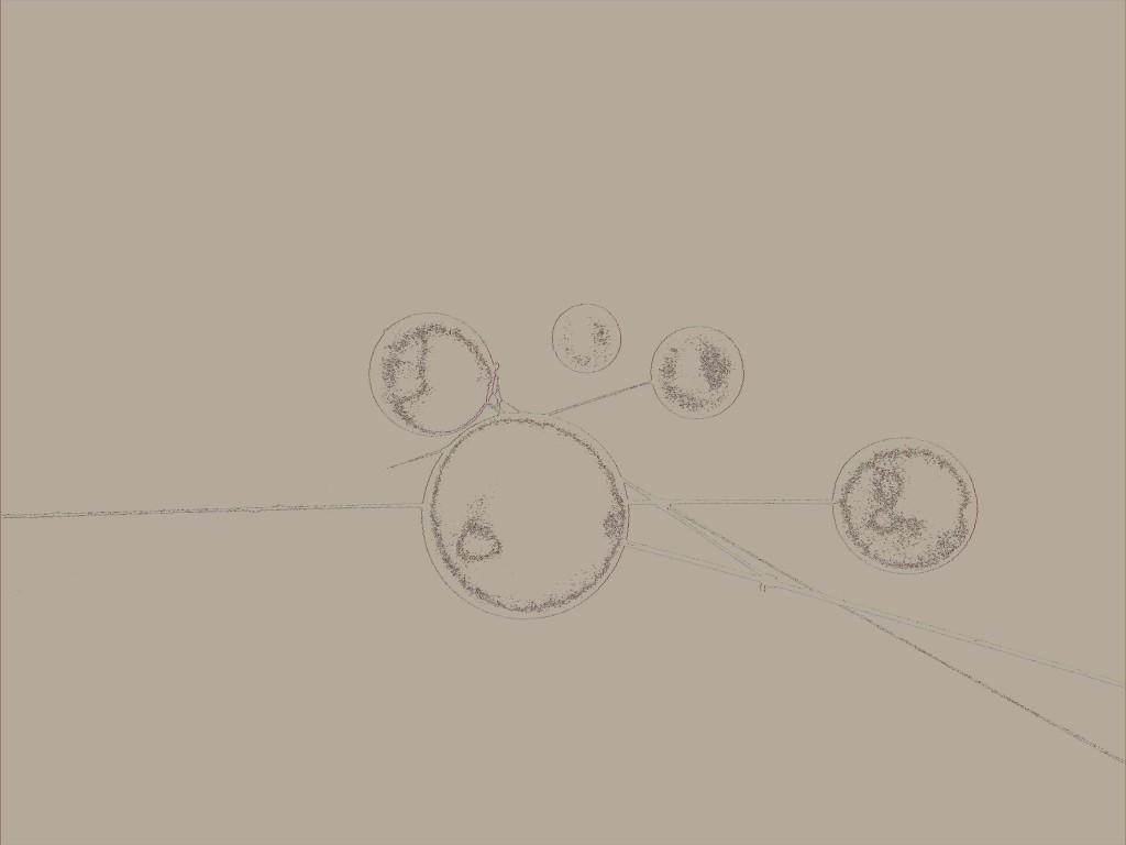 browned ballons  IMG_0999 lofi
